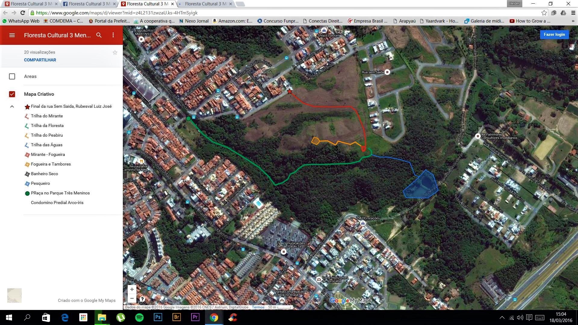 vista aérea da floresta urbana...trilhas abertas dentro da área verde